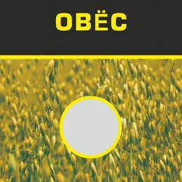 Удобрения - Пермагробизнес Овес (сидераты), 0