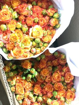 Цветы, букеты, композиции - цветы опт,розница, 0