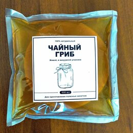 Ингредиенты для приготовления напитков - Чайный гриб (комбуча) , 0