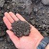 Доставка чернозема по цене 250₽ - Субстраты, грунты, мульча, фото 2