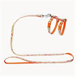 Шлейки  - HUNTER SMART шлейка для кошек и собак SEVENTIES нейлон оранжевая , 0