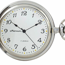 Карманные часы - Карманные часы Молния 0030101-m, 0