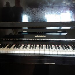 Клавишные инструменты - Пианино Заря черное, 0