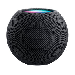 Акустические системы - Apple HomePod Mini (Space Gray), 0