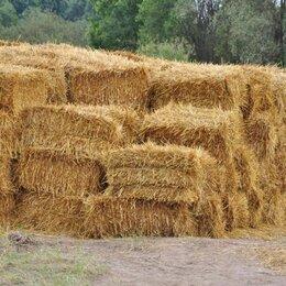 Сено и наполнители - Солома пшеничная тюк (20 кг), 0
