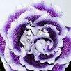 Глоксинии (излишки коллекции) по цене 30₽ - Комнатные растения, фото 6