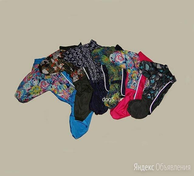 дождевик для собаки с закрытым животом по цене 1350₽ - Одежда и обувь, фото 0
