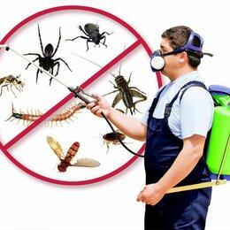 Отпугиватели и ловушки для птиц и грызунов - Товары для борьбы с насекомыми и грызунами., 0