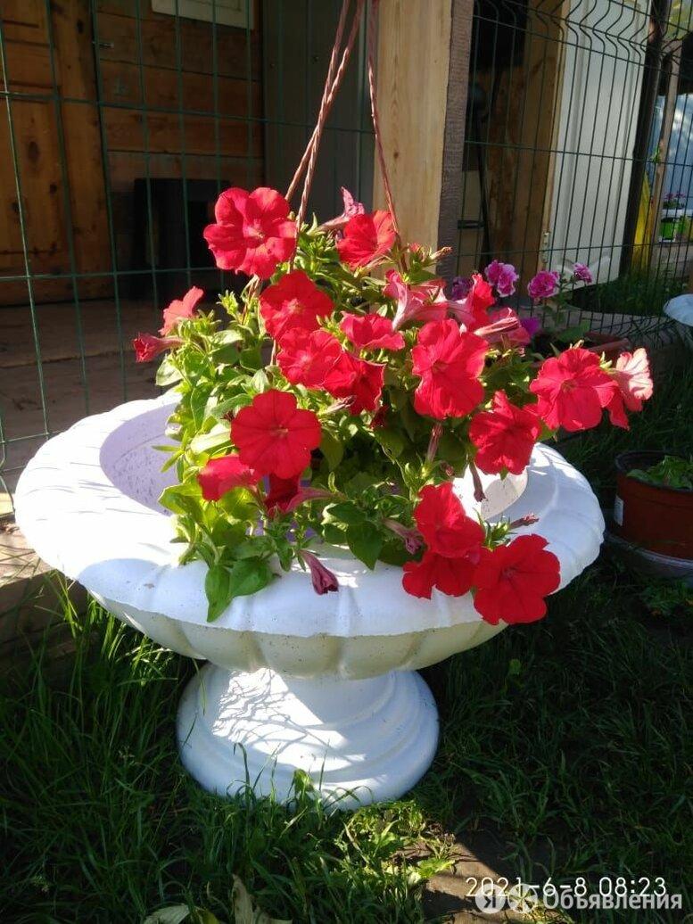 Вазон уличный  из бетона по цене 2200₽ - Садовые фигуры и цветочницы, фото 0