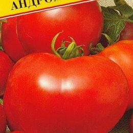 Семена - Томат Андромеда F1 (Престиж), 0