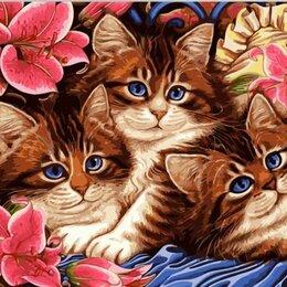 Рисование - Картина по номерам, акриловые краски, котята 40 50, 0
