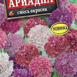 Дезинфицирующие средства - Армерия Ариадна смесь окрасок (Аэлита), 0