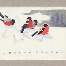 Открытки - Открытка СССР Новый год 1965 Стриженов чистая снегирь птица снег праздник, 0