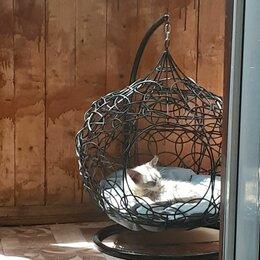 Лежаки, домики, спальные места - Лежанка для кошек, 0
