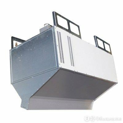 Электрическая тепловая завеса Тепломаш КЭВ-55П4160G по цене 499754₽ - Тепловые завесы, фото 0