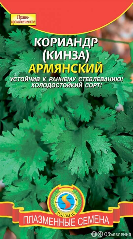 Кориандр Армянский ПЛ по цене 18₽ - Искусство и культура, фото 0