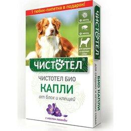 Прочие товары для животных - Капли от клещей/блох для средних и крупных собак (2 пипетки*2,5 мл) Чистотел ..., 0