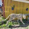 Фигуры топиари собаки по цене 5000₽ - Садовые фигуры и цветочницы, фото 5