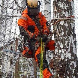 Прочие услуги - Спилить дерево, спил деревьев без автовышки, 0