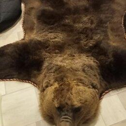 Рога, шкуры, чучела животных - Ковер из медвежьей шкуры, 0