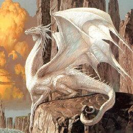 Настольные игры - Белый дракон Артикул : GFR 5055, 0