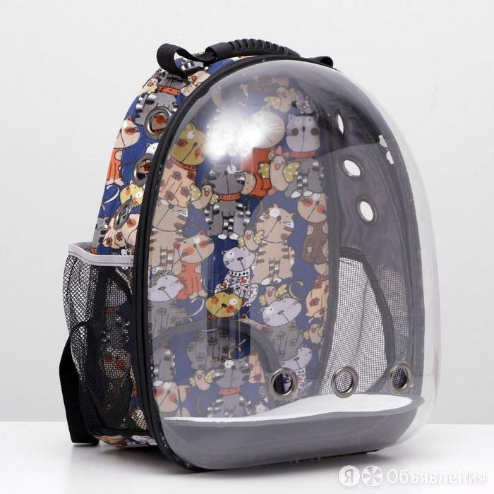 Рюкзак для переноски животных прозрачный 'Коты', 31 х 28 х 42 см по цене 3145₽ - Транспортировка, переноски, фото 0