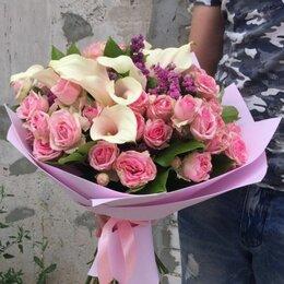 Комнатные растения - Роза каллы, 0