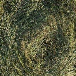 Сено и наполнители - Продажа сена в рулонах , 0