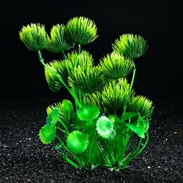 Растения для аквариумов и террариумов - Композиция с растениями искусственными для аквариума, 25 см (комплект из 2 шт.), 0
