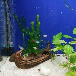 Грунты для аквариумов и террариумов - Грунт для Аквариума - Кварцевый песок, 0