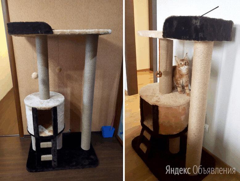 Домик для кошки с когтеточкой по цене 7180₽ - Когтеточки и комплексы , фото 0