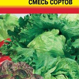 Ингредиенты для приготовления напитков - Салат Смесь Кочанных сортов УУД, 0