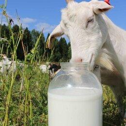 Продукты - Продукты питания (козье молоко, диетическое яйцо), 0