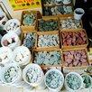 Камни для бани и сауны по цене 14₽ - Камни для печей, фото 14