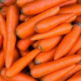 Упаковщики - Упаковщик/фасовщик мытой моркови , 0