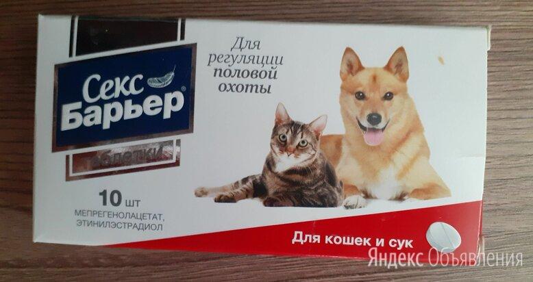 Лекарство для кошек и собак от гуляния по цене 190₽ - Прочие товары для животных, фото 0