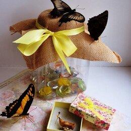 Развивающие игрушки - Детская миниферма тропических бабочек Magic Wings, 0