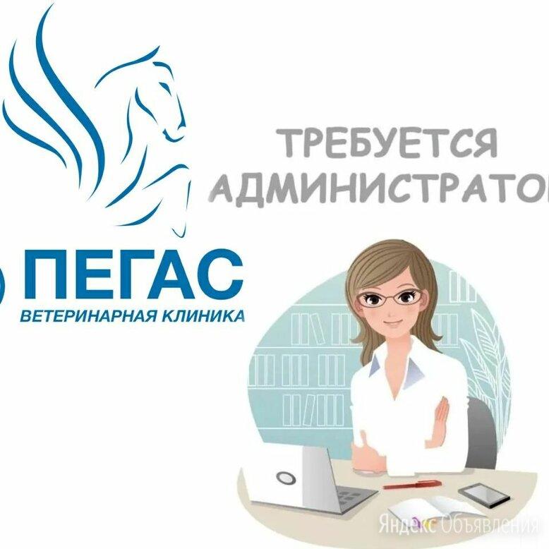 Администратор в ветеринарную клинику - Администраторы, фото 0