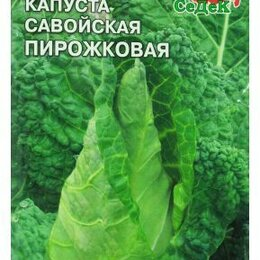 Лук-севок, семенной картофель, чеснок - Капуста Савойская Пирожковая (Седек), 0
