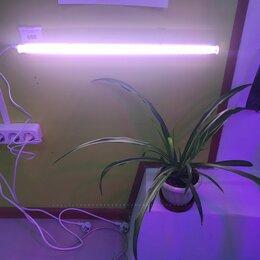Аксессуары и средства для ухода за растениями - Фитолампа  для растений 54,3 см (9 Вт) - светодиодная, универсальная, 0