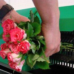 Прочий инвентарь и инструменты - Станки для чистки цветов , 0