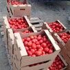 Гофролоток для овощей и фруктов самосборный 385*290*183мм. по цене 48₽ - Упаковочные материалы, фото 2