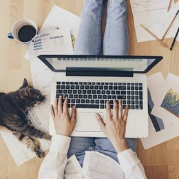 Консультанты - Сотрудник в онлайн проект,(подработка на дому), 0