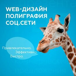 IT, интернет и реклама - Web-дизайн, полиграфический дизайн, 0