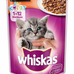 Корма  - Whiskas д/котят желе Телятина 28 1 85г, 0
