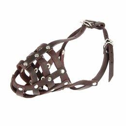 Намордники и недоуздки  - Намордник кожаный 'Зооник' 1 (спаниель, сеттер), длина по носу 8 см, обхват м..., 0