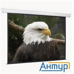 Экраны - Screenmedia Champion [scm-4304] Экран с эл. приводом,183x244 Mw, 0