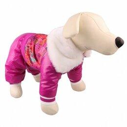 Одежда и обувь - Комбинезон dezzie для собак зима девочка, 0