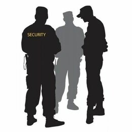 Охранники - Охранник, 0