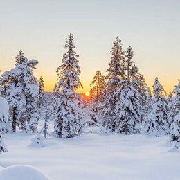Экскурсии и туристические услуги - Волшебный Новый Год в Карелии, 4 дня, 0